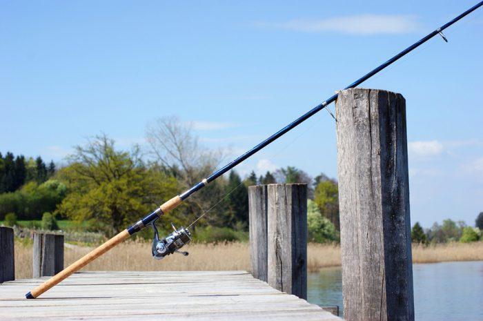 Canne da pesca bolognese prezzi offerte e recensioni for Combustibile zibro prezzi e offerte