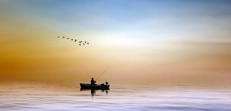 canne da pesca da bolentino come scegliere