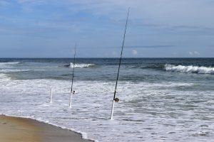 Canne da pesca surfcasting   Prezzi 99c15974a36c