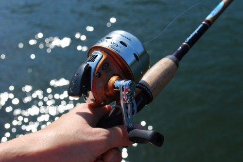 canne da pesca professionali