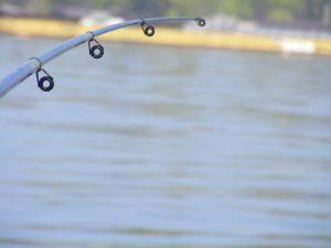 Migliori anelli per canne da pesca